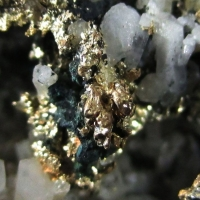 Native Gold Var Electrum On Quartz