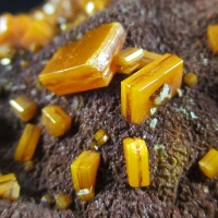 Wulfenite On Descloizite
