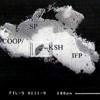 Kashinite Cooperite & Sperrylite