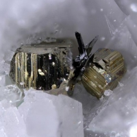 Lengenbachite With Pyrite