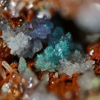 Scorodite With Chalcophyllite & Pharmacosiderite