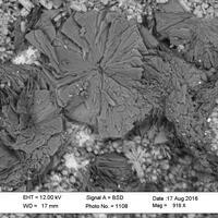 Joy Desor Minerals: 30 Aug - 06 Sep 2016