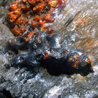 Duranusite