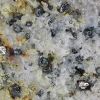 Vihorlatite & Telluronevskite