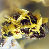 Wulfenite Tsumcorite & Adamite