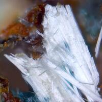 Olsacherite & Molybdomenite