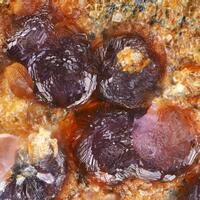 Mansfieldite Smolyaninovite & Erythrite