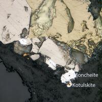 Sopcheite Kotulskite & Moncheite