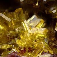 Billietite & Uranopilite & Ammoniozippeite
