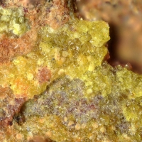 Joliotite & Rutherfordine