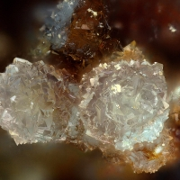 Leonardsenite