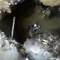 Clausthalite & Naumannite