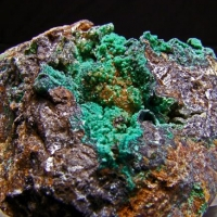Austinite & Conichalcite