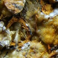 Gorceixite Apatite Baryte & Goethite Psm Siderite