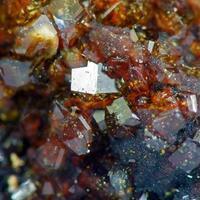 Fluellite On Leucophosphite