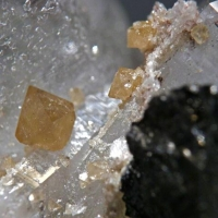 Scheelite On Quartz With Wolframite