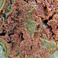 Cobaltoan Calcite & Cobaltaustinite
