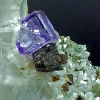 Scheelite Fluorite & Dolomite On Quartz