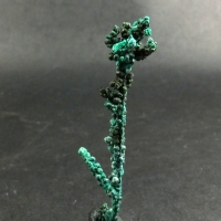 Ktenasite Paratacamite On Native Copper