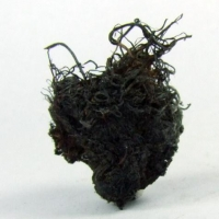 Native Silver & Bromian Chlorargyrite