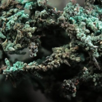 Paratacamite On Native Copper