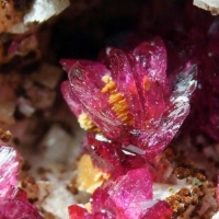Wendwilsonite Talmessite & Cobaltlotharmeyerite