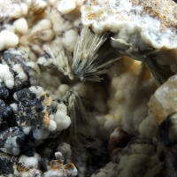 Gorceixite Psm Wavellite On Apatite