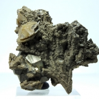 Pyrite & Calcite On Siderite