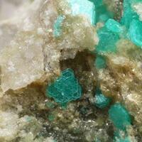 Chalcophyllite & Azurite