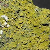 Wulfenite & Mottramite