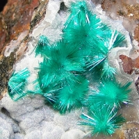 Brochantite & Chalcoalumite