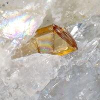 Fluorlamprophyllite