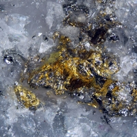 Kawazulite & Gold