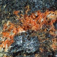Coralloite