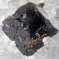 Uranmicrolite