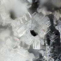 Nothern Minerals: 06 Dec - 13 Dec 2018