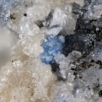 Nothern Minerals: 21 Feb - 28 Feb 2019