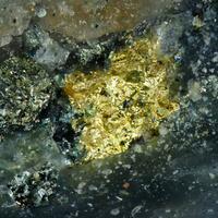 Gold & Altaite