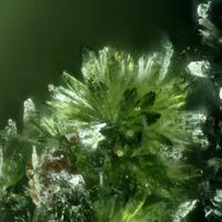 Cobaltaustinite