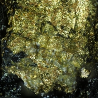 Gold On Uraninite