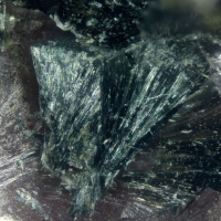 Ferro-ferri-winchite