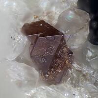 Fluorcalciopyrochlore