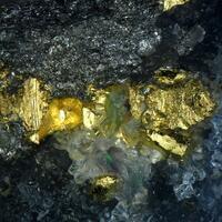 Gold With Tellurobismuthite