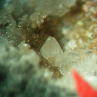 Cryolite & Weloganite