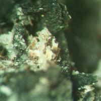 Barytolamprophyllite