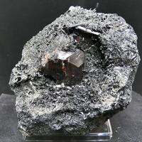 Vesuvianite On Ferro-hornblende