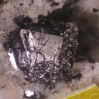 Britholite-(Ce) & Allanite-(Ce)