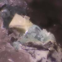 Bottinoite
