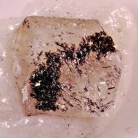 Marumoite
