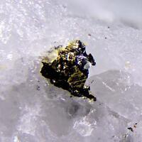 Rucklidgeite & Gold